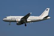 Airbus A319-115X/CJ (MM62209)