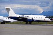 Canadair CL-600-2B16 Challenger 604 (N134WM)