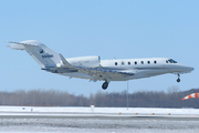 Cessna 750 Citation X (N90NF)