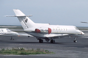 Raytheon Hawker 800B