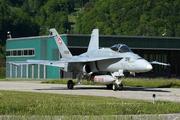 McDonnell Douglas F/A-18C Hornet (J-5006)