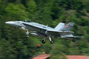 McDonnell Douglas F/A-18C Hornet (J-5012)
