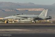 McDonnel Douglas/Boeing F/A-18F Super Hornet (165793)