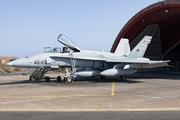 McDonnell Douglas EF-18A Hornet (C.15-79)