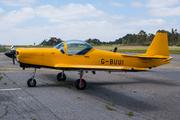 Slingsby T-67 Firefly