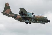Lockheed C-130H Hercules (L-382) (1303)