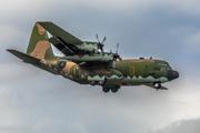 Lockheed C-130H Hercules (L-382) (1301)