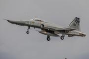 Northrop F-5 Freedom Fighter/Tiger