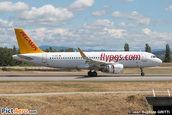 A320-214(WL)  (Pegasus)