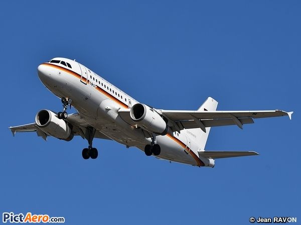 Airbus A319-133X/CJ (Germany - Air Force)