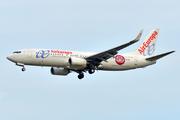 Boeing 737-85P/WL (EC-LPR)