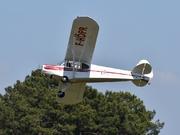 Piper PA-18-95 Super Cub (F-HDPR)