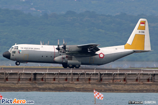 Lockheed C-130H-30 Hercules (L-382T) (Indonesia - Air Force)