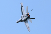 McDonnell Douglas F/A-18C Hornet (J-5020)