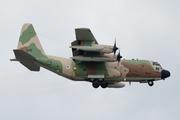 Lockheed KC-130H Hercules (545)
