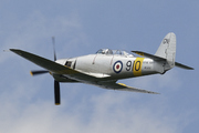 Hawker Sea Fury T Mk20 (G-CHFP)