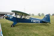 Piper L-4H Grasshopper  (J-3C-65D) (F-BDTS)
