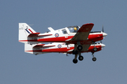 Scottish Aviation Bulldog T-1 (Beagle) (F-AZKI)