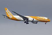 Boeing 787-8 Dreamliner - 9V-OFE