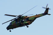 NH Industries NH-90 TTH Caiman (EBA)