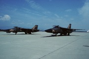 General Dynamics F-111 Aardvark/Raven