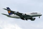 Airbus A380-841 (D-AIML)