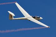 Schleicher ASK-21 (F-CIAT)