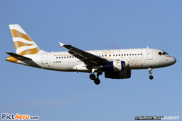 Airbus A319-131 (British Airways)