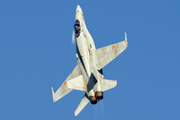 McDonnell Douglas EF-18B [M] Hornet (C.15-31)