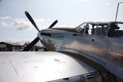 North American P-51C Mustang (NL6555B)