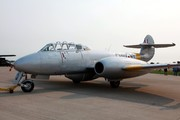 Gloster Meteor T7  (NX313Q)
