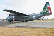 C-130E Hercules (4178)