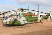 Westland SA-341B Gazelle AH1 (ZA772)
