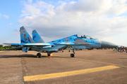 Sukhoi Su-27 (71)