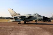 PA-200 Tornado IDS/ECR (44+66)