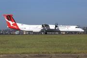 De Havilland Canada DHC-8-402Q Dash 8 (VH-QOA)
