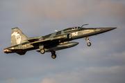 Northrop F-5EM