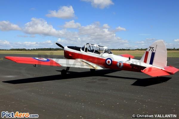 T.Mk.10 (MM. Gilles Carter et Patrick Pierre-Pierre)