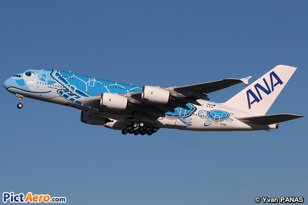 Airbus A380-841 (All Nippon Airways)