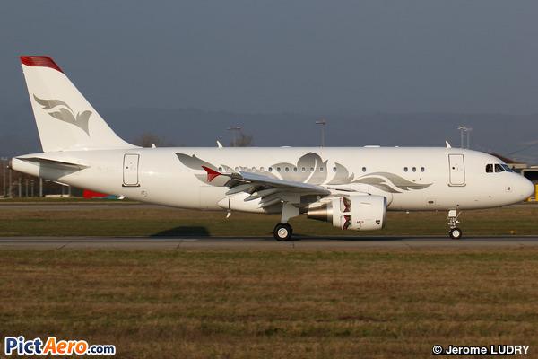 Airbus A319-115CJ (Private / Privé)