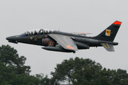 Dassault Dornier AlphaJet E (8-RM)