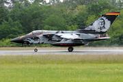 Panavia Tornado IDS (43+25)
