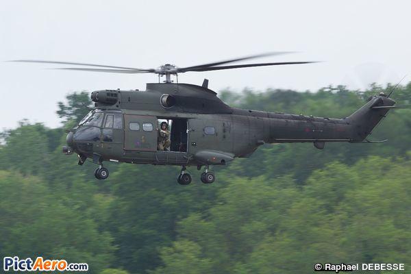 SA330H Puma  (Royal Air Force)