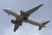 Airbus A320-251N (F-WWBX)