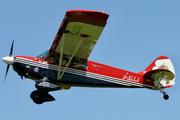 Aviat A-1 Husky (D-EIXX)