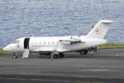 Canadair CL-600-2B16 Challenger 604 (D-AFAA)