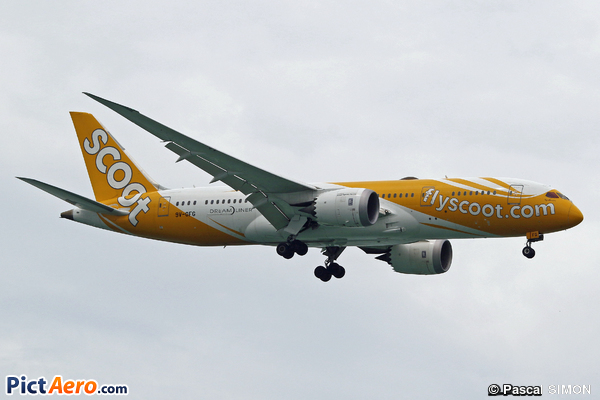 Boeing 787-8 Dreamliner (Scoot Airways)