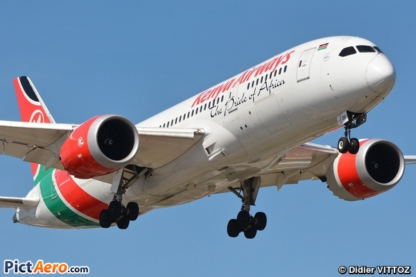 Boeing 787-8 Dreamliner (Kenya Airways)