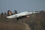Northrop F-5E Tiger II (J-3033)