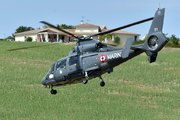 Eurocopter AS-365N-2 Dauphin 2 (81)